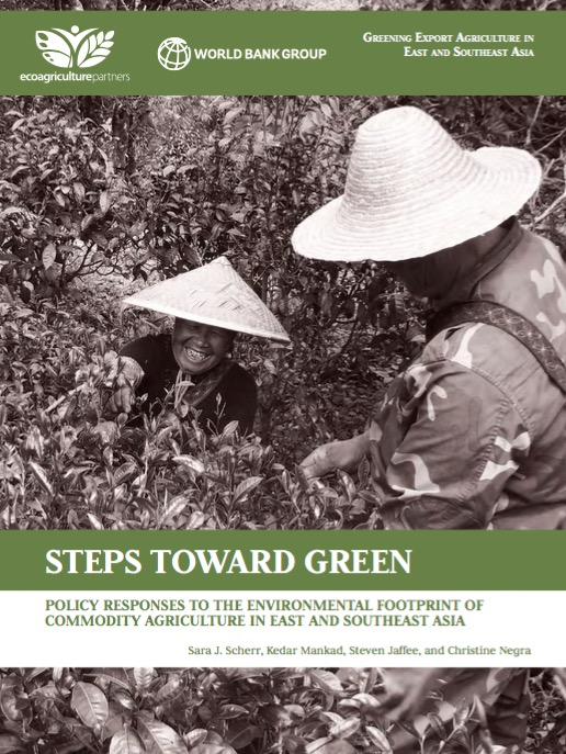 Steps_towards_Green